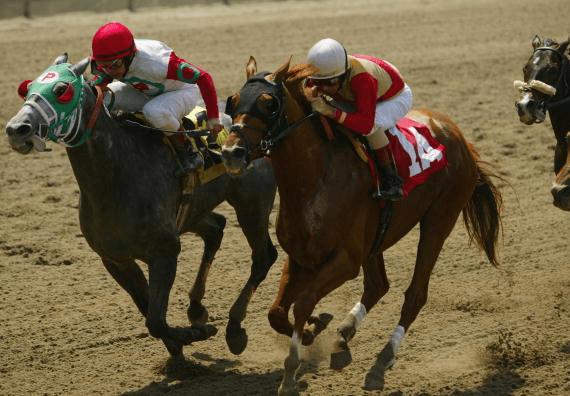 2002 Belmont Stakes Longshot Sarava