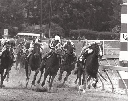 1975 Preakness Winner Master Derby