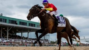 Preakness Betting Sites 2018 Quip