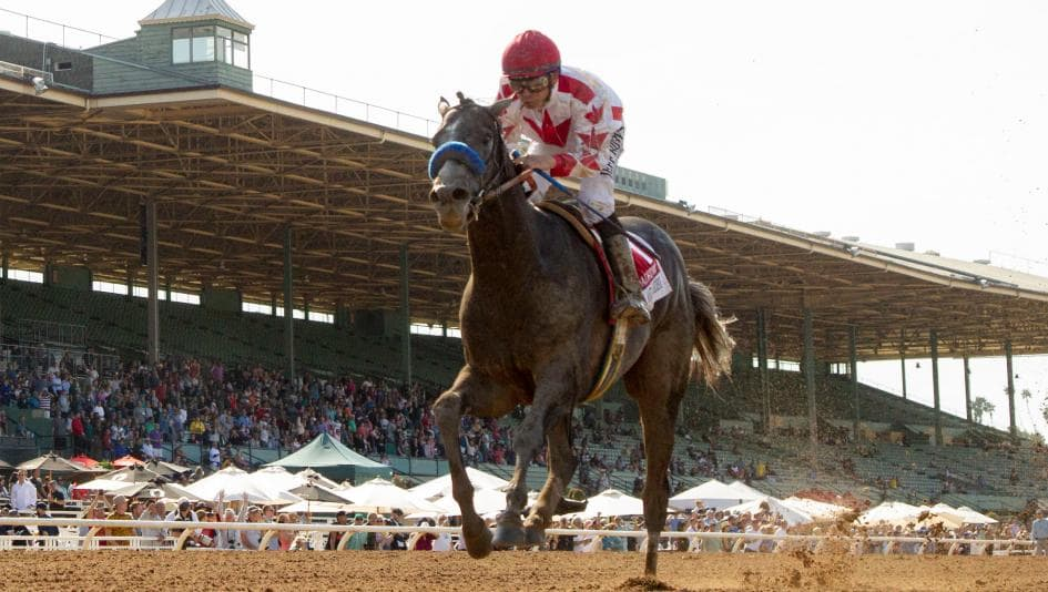 2020 Kentucky Derby Betting Sites Post Time Live Stream